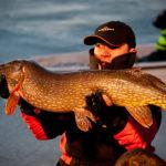 pescuit de stiuca in delta