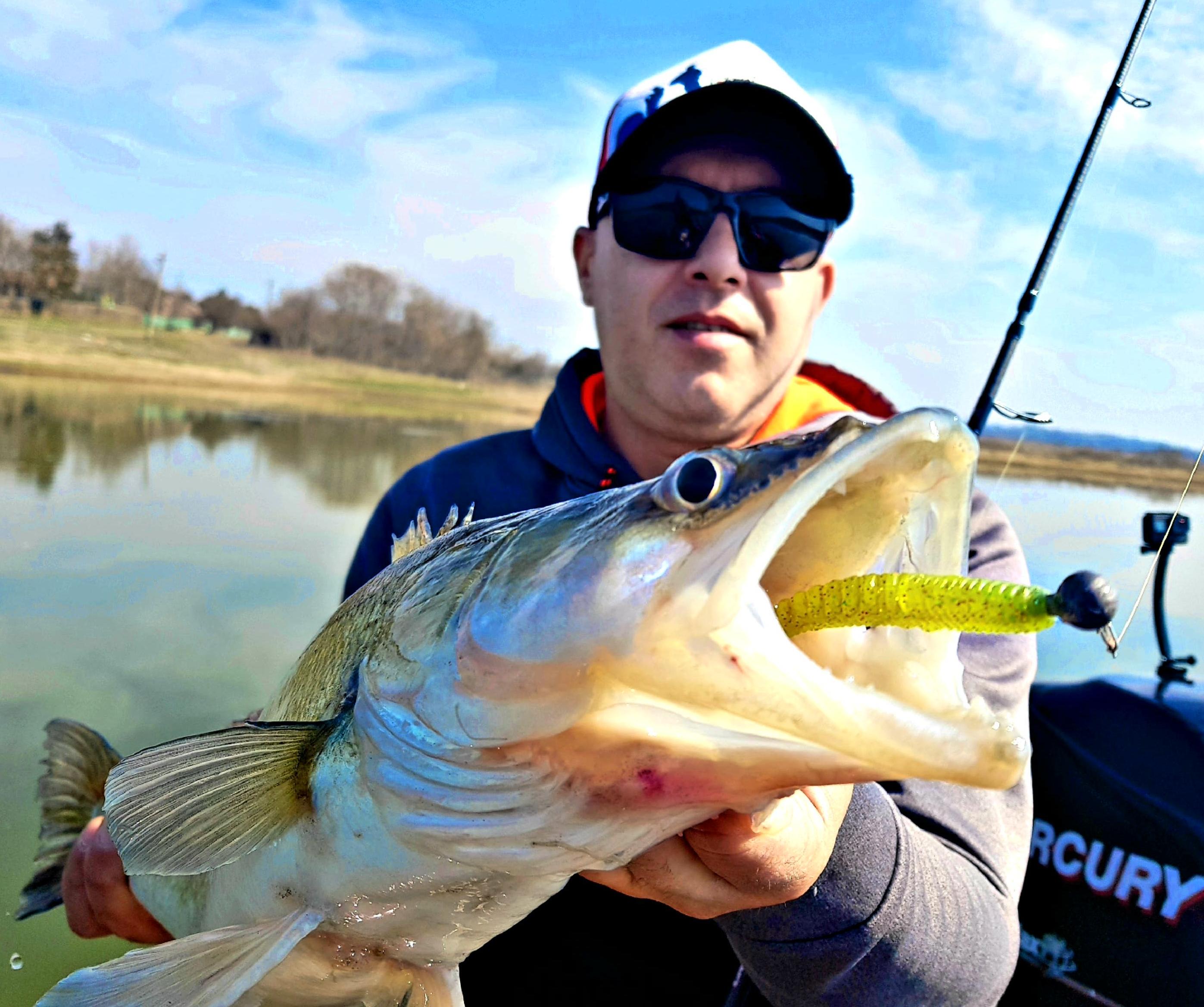 Primele partide de pescuit la salau 2018